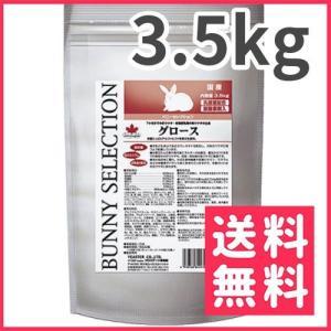【お取寄せ品】イースター バニーセレクション グロース  3.5kg【送料無料】|rocky
