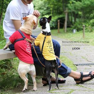 犬 服 ペアルック ペットとお揃い ドッグウエア 小型犬 中型犬