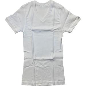 GUNZE(グンゼ)BODYWILD(ボディーワイルド) VネックTシャツ BWJ415|roco
