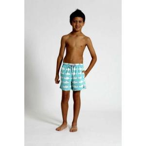 トム & テディー 水着 フィッシュ・ブルー&ホワイト キッズ サイズ 男児用 サーフパンツ ハーフパンツ 男の子|rocobi