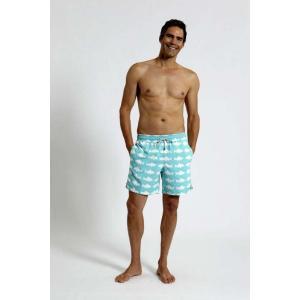 トム & テディー 水着 フィッシュ・ブルー&ホワイト メンズ サイズ 男性用 サーフパンツ ハーフパンツ|rocobi