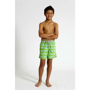 トム & テディー 水着 フィッシュ・グリーン&ブルー キッズ サイズ 男児用 サーフパンツ ハーフパンツ 男の子|rocobi