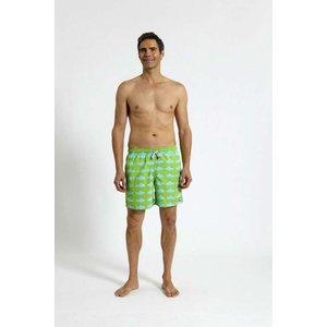 トム & テディー 水着 フィッシュ・グリーン&ブルー メンズ サイズ 男性用 サーフパンツ ハーフパンツ|rocobi