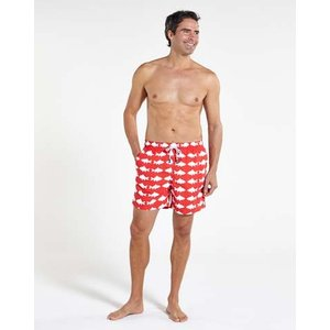 トム & テディー 水着 フィッシュ・レッド&ホワイト メンズ サイズ 男性用 サーフパンツ ハーフパンツ|rocobi
