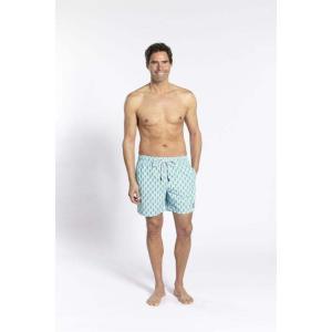 トム & テディー 水着 アイスクリーム・ライム&ネイビー メンズ サイズ 男性用 サーフパンツ ハーフパンツ|rocobi