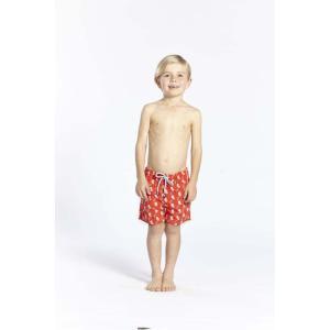 トム & テディー 水着 カイト・ポピーレッド キッズ サイズ 男児用 サーフパンツ ハーフパンツ 男の子|rocobi