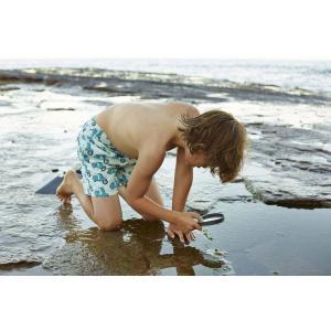トム & テディー 水着 スクーター・ブルー&ブルー キッズ サイズ 男児用 サーフパンツ ハーフパンツ 男の子|rocobi
