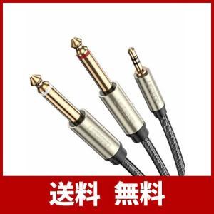 UGREEN オーディオケーブル 3.5mm to 6.35mm 変換ステレオミニプラグ 2分配 t...