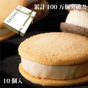 サブレケーキ プレーン&ショコラ(10個入り)