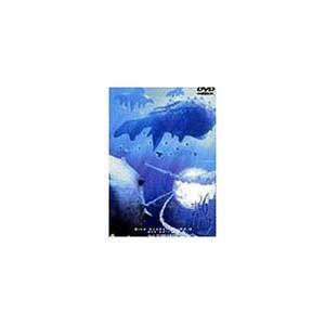 青の6号 dts edition Vol.3 [DVD] rokufi