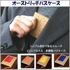 パスケース 定期入れ 薄型カードケース 高級感あるオーストリッチ調型押し 外側キャメル メール便可|romanbag