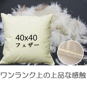 フェザーヌードクッション(羽根クッション中材) 40x40cm|room-style