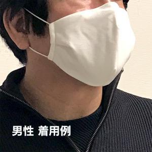 布マスク 洗える マスク 在庫あり 3枚セット 7層構造 布マスク ノーズワイヤー 立体縫製  高機能 大人用【返品不可】|roombania|09