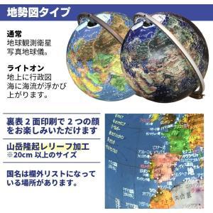 地球儀 しゃべる 地球儀 直径20cm 光る ライト AR アプリ  日本語 英語 地勢図/行政 インテリア アンティーク/リアルアース 子供 ランプ|roombania|11