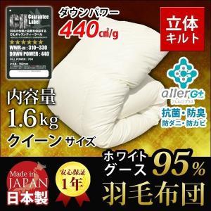 羽毛布団 (無地) ホワイトマザーグースダウン95% A759QZ クイーン 新生活 代引不可 同梱不可 roomdesign