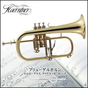 フリューゲルホルン Kaerntner ケルントナー KFG-50 初心者用 セット 入門用 練習 コンサート ステージ 代引不可 同梱不可|roomdesign