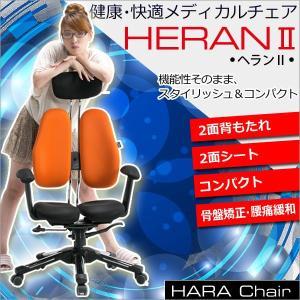 Hara Chair ハラチェア ヘラン2 コンパクトタイプ(全7色 メッシュタイプ)高機能チェア オフィスチェア