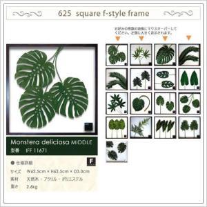 モンステラ フレーム 北欧テイスト 観葉植物 アートパネル ( F style frame リーフパネル625×625 )