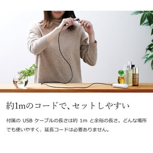 携帯用ヘアアイロン ストレートアイロン ミニ  USB コンセント  mod's hair [ モッズ・ヘア スタイリッシュ モバイルヘアアイロン MHS-0840 ]|roomy|13