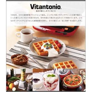 ビタントニオ ミル付き VCD-200 珈琲  [ Vitantonio 全自動コーヒーメーカー ]  roomy 13