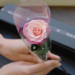 ブラックボックス・薔薇(バラ)のプリザーブドフラワーギフト  新色グラデーション 女性 誕生日|rosegarden|02