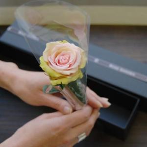 ブラックボックス・薔薇(バラ)のプリザーブドフラワーギフト  新色グラデーション 女性 誕生日|rosegarden|04