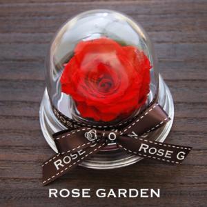 プチギフト ドーム型アレンジ・プリザーブドフラワー赤(レッド)・ピンク・青(ブルー)・黄(イエロー)・白(ホワイト)|rosegarden