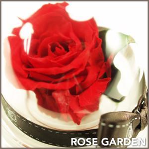 プチギフト ドーム型アレンジ・プリザーブドフラワー赤(レッド)・ピンク・青(ブルー)・黄(イエロー)・白(ホワイト)|rosegarden|02