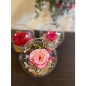 【送料無料】母の日 ガラスドーム 限定オールドローズ・バラ rosegarden