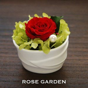 ホワイトリーフ「プチギフト」 プリザーブドフラワー 赤(レッド)・ピンク・青(ブルー)・黄(イエロー)・白(ホワイト) |rosegarden
