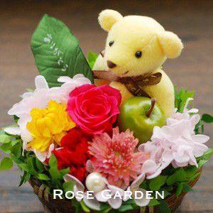 アロマベア「ありがとう」リーフ付・プリザーブドフラワー 母の日 カーネーション 赤・ピンク|rosegarden