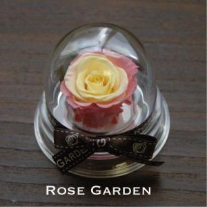 新カラー3色から選べる プチギフトドーム・グラデーション プリザーブドフラワーギフト誕生日プレゼントにも|rosegarden