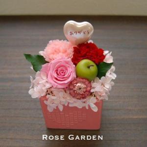【25%OFF】スイートハート(ピンク、イエロー) カーネーションのプリザ|rosegarden