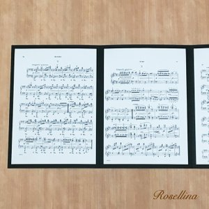 4面楽譜台紙(ブラック 2枚入り) クリックポストOK|rosellina|03