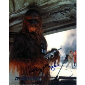 Chewbacca Portrait|roswell-japan