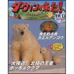 NHKダーウィンが来た!DVDブック  14号 ホッキョクグマ/カエルアンコウ|roudoku
