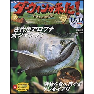 NHKダーウィンが来た!DVDブック  15号 アロワナ/グンタイアリ|roudoku