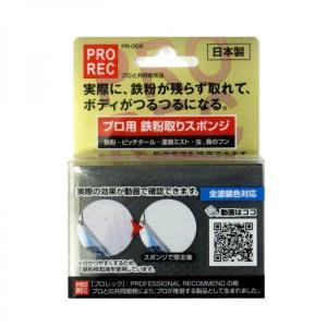 トラック用品 AUG PR-009 プロ用鉄粉取りスポンジ|route2yss