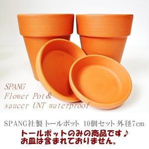 鉢 素焼鉢 テラコッタ SPANG社製 トールポット 10個セット 外径7cm ガーデニング ドイツ スパング社|rovel