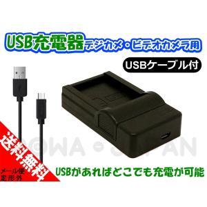 PANASONIC パナソニック DMW-BCF10 / DMW-BCG10 / DMW-BCJ13 対応 USB充電器 バッテリーチャージャー 【ロワジャパン】|rowa