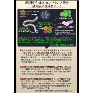プラセンタ サプリメント 馬 国産 北海道サラブレッドプラセンタ原末230mg+DNA核酸原末75 合計4袋 ほぼ原価販売 royal-y3000 05