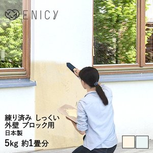 簡単 練り済み 漆喰 外壁 ブロック用 5kg 約1畳分 約2平米 | 左官道具 施工用品 塗り壁 ...