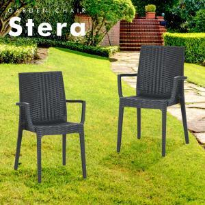 ステラチェア(肘付き)2脚セット |  チェアー ガーデンチェアー チェア 椅子 屋外 ガーデニング ガーデン ベランダ 家具 ガーデンファニチャ|royal3000