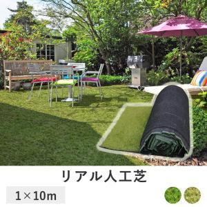 芝目が綺麗な 人工芝 ロール 1m × 10m 深型 芝たけ3.5cm   固定ピン付き 天然芝感 35mm リアル人工芝 芝マット 人工芝生 人工芝マット 芝生ロールタイプ royal3000