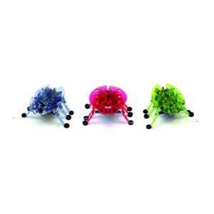 ヘックスバグ カブトムシ Hexbug beetle (1個・お色と形はおまかせください)|rrcompany