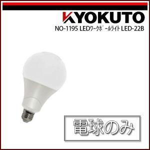 極東産機 LED電球 22W LED-22B|rrd