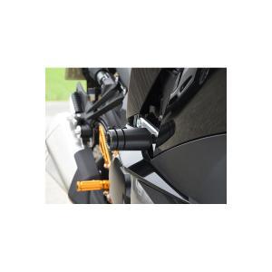 ベビーフェイス フレームスライダー Ninja1000 17|rubbermark
