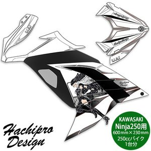 Hachipro Design デカールキット ヴァルキリー カワサキ Ninja250 ステッカー バイク デカール シール 左右セット ハチプロデザイン PDK748VL|rubbermark