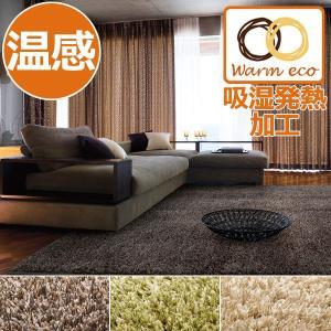 ラグ 温感 ラグマット シャギークアント 190×190cm ホットカーペット・床暖房対応・滑り止め|rugmat