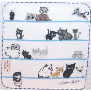 泉州タオル ガーゼ無撚糸 シンジカトウchaton 100匹の猫たちの物語「ボーダー」 23×23 |ruinok-2